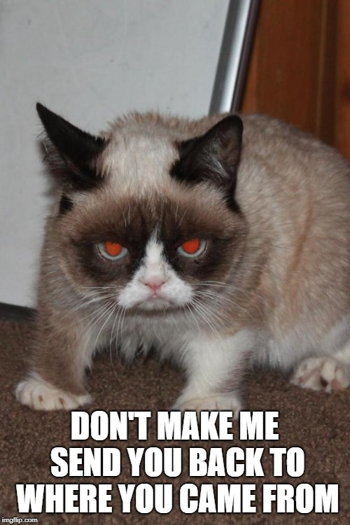 Grumpy Cat red eyes | DON'T MAKE ME SEND YOU BACK TO WHERE YOU CAME FROM | image tagged in grumpy cat red eyes | made w/ Imgflip meme maker