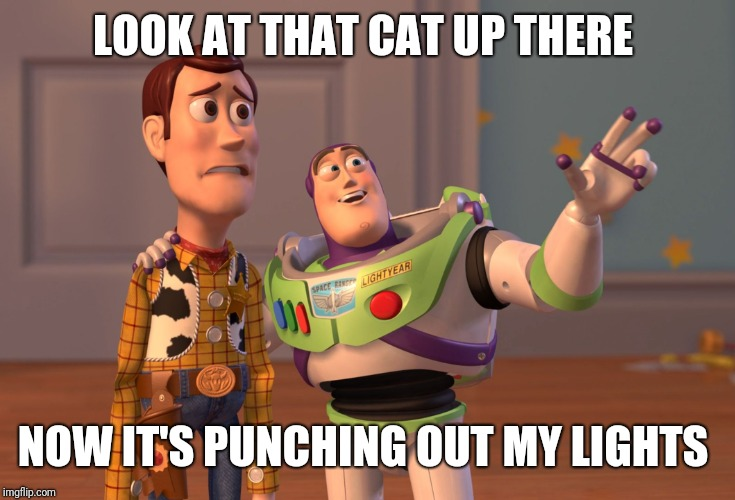 X, X Everywhere Meme | LOOK AT THAT CAT UP THERE NOW IT'S PUNCHING OUT MY LIGHTS | image tagged in memes,x x everywhere | made w/ Imgflip meme maker