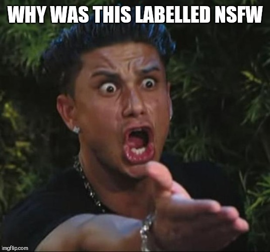 DJ Pauly D Meme | WHY WAS THIS LABELLED NSFW | image tagged in memes,dj pauly d | made w/ Imgflip meme maker