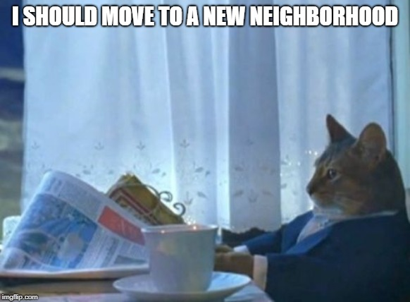 I Should Buy A Boat Cat Meme | I SHOULD MOVE TO A NEW NEIGHBORHOOD | image tagged in memes,i should buy a boat cat | made w/ Imgflip meme maker