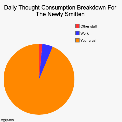 Daily Thought Consumption Breakdown For The Newly Smitten | Your crush, Work, Other stuff | image tagged in funny,pie charts | made w/ Imgflip chart maker