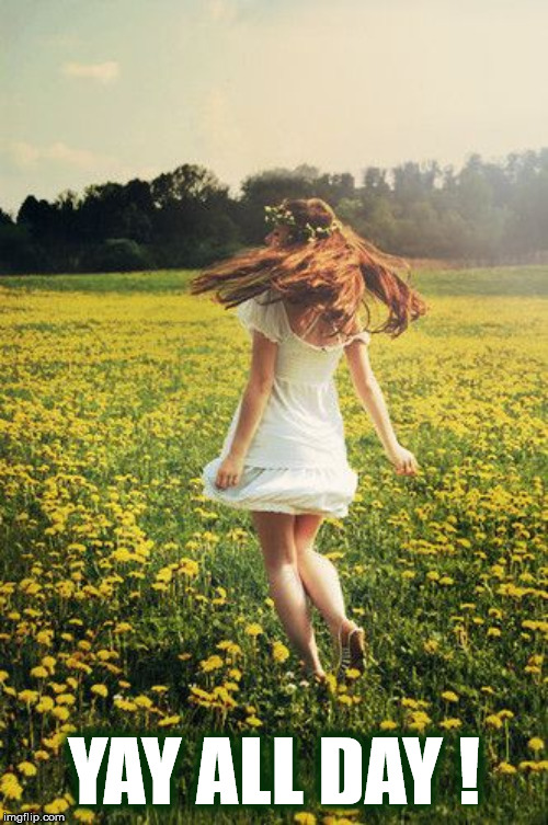 YAY ALL DAY ! | YAY ALL DAY ! | image tagged in woman,dance,flowers,field,yay,dandelion | made w/ Imgflip meme maker