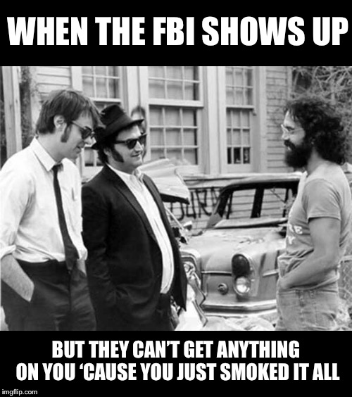 Wow, man, they got the blues, brother... | WHEN THE FBI SHOWS UP BUT THEY CAN'T GET ANYTHING ON YOU 'CAUSE YOU JUST SMOKED IT ALL | image tagged in blues brothers,tommy chong,classic movies,black and white,funny memes | made w/ Imgflip meme maker