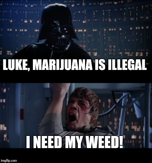 Star Wars No Meme | LUKE, MARIJUANA IS ILLEGAL I NEED MY WEED! | image tagged in memes,star wars no | made w/ Imgflip meme maker