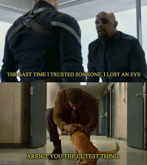 The full story | THE LAST TIME I TRUSTED SOMEONE, I LOST AN EYE AREN'T YOU THE CUTEST THING. | image tagged in nick fury,captain america,captain marvel,avengers infinity war,marvel,winter soldier | made w/ Imgflip meme maker