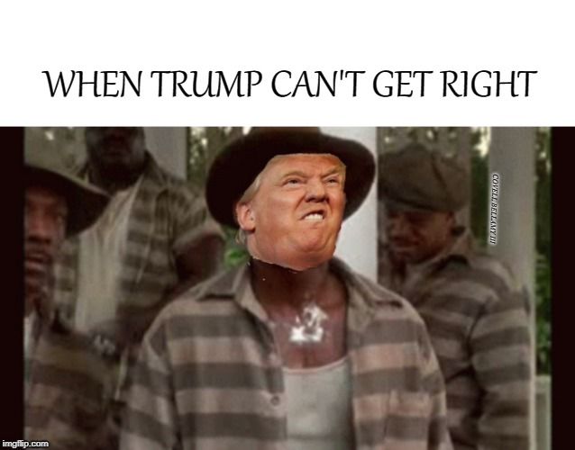 WHEN TRUMP CAN'T GET RIGHT COVELL BELLAMY III | image tagged in trump can't get right | made w/ Imgflip meme maker
