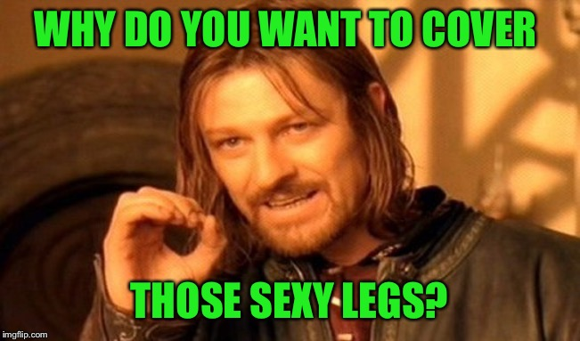 One Does Not Simply Meme | WHY DO YOU WANT TO COVER THOSE SEXY LEGS? | image tagged in memes,one does not simply | made w/ Imgflip meme maker