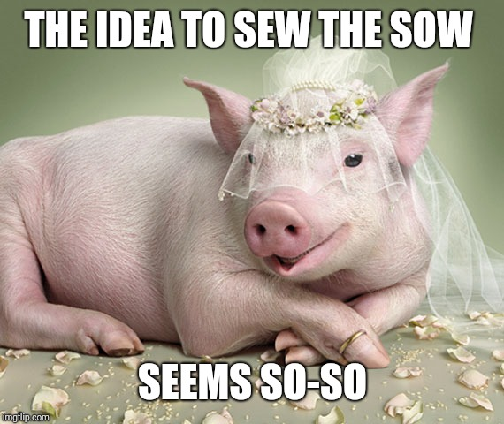 Foul Married Sow | THE IDEA TO SEW THE SOW SEEMS SO-SO | image tagged in foul married sow | made w/ Imgflip meme maker