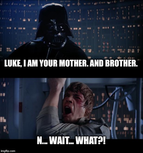 Star Wars No Meme | LUKE, I AM YOUR MOTHER. AND BROTHER. N... WAIT... WHAT?! | image tagged in memes,star wars no | made w/ Imgflip meme maker
