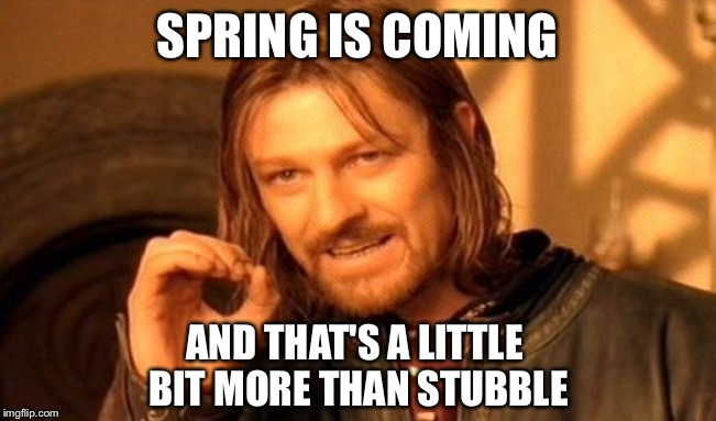 One Does Not Simply Meme | SPRING IS COMING AND THAT'S A LITTLE BIT MORE THAN STUBBLE | image tagged in memes,one does not simply | made w/ Imgflip meme maker