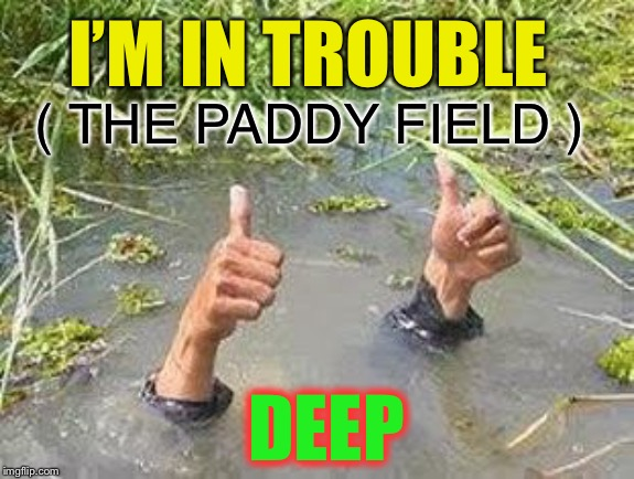 FLOODING THUMBS UP | I'M IN TROUBLE DEEP ( THE PADDY FIELD ) | image tagged in flooding thumbs up | made w/ Imgflip meme maker