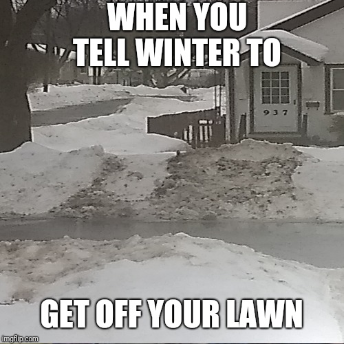 Bird Box | WHEN YOU TELL WINTER TO GET OFF YOUR LAWN | image tagged in memes | made w/ Imgflip meme maker