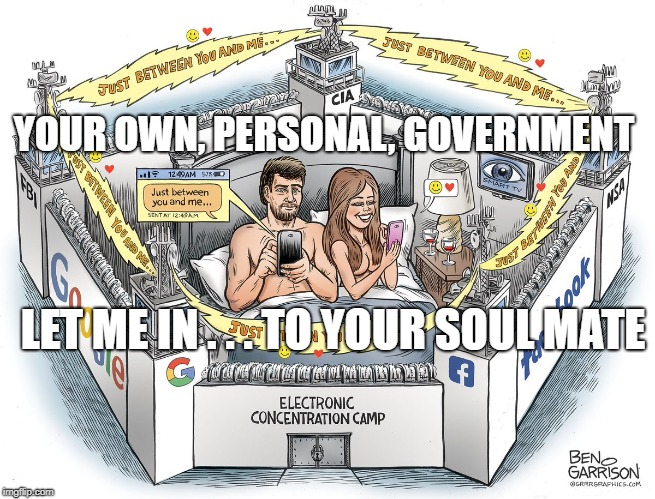 YOUR OWN, PERSONAL, GOVERNMENT LET ME IN . . . TO YOUR SOUL MATE | image tagged in in your closet | made w/ Imgflip meme maker