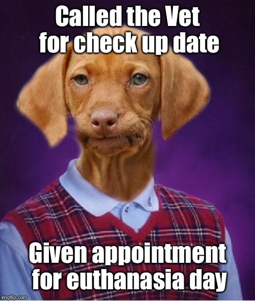 Goes to appointment anyway |  Called the Vet for check up date; Given appointment for euthanasia day | image tagged in bad luck raydog,veterinarian,appointment,mistake,euthenasia schedule | made w/ Imgflip meme maker