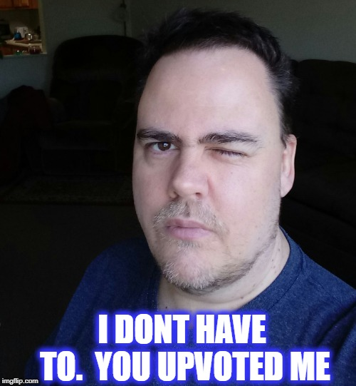 wink | I DONT HAVE TO.  YOU UPVOTED ME | image tagged in wink | made w/ Imgflip meme maker