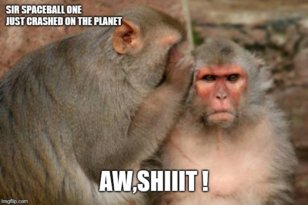 SIR SPACEBALL ONE JUST CRASHED ON THE PLANET AW,SHIIIT ! | image tagged in rhesus monkeys | made w/ Imgflip meme maker