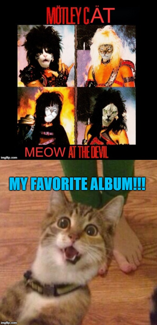 MY FAVORITE ALBUM!!! | image tagged in cats,memes,motley crue | made w/ Imgflip meme maker