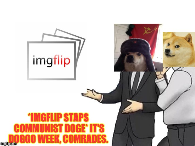 AW YEEEEEAH... (Doggo week. A 1forpeace and Blaze_the_Blaziken event)  | *IMGFLIP STAPS COMMUNIST DOGE* IT'S DOGGO WEEK, COMRADES. | image tagged in memes,car salesman slaps hood,doggo week | made w/ Imgflip meme maker