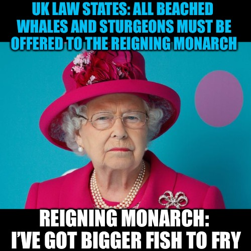 "Event for ""Most stupid Laws"" suggested by Katechuks for April - Well I'm up for it! 