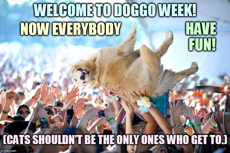 Doggo Week March 10-16 a Blaze_the_Blaziken and 1forpeace Event | WELCOME TO DOGGO WEEK! (CATS SHOULDN'T BE THE ONLY ONES WHO GET TO.) NOW EVERYBODY HAVE FUN! | image tagged in memes,dog,crowd,surfing,welcome,doggo week | made w/ Imgflip meme maker