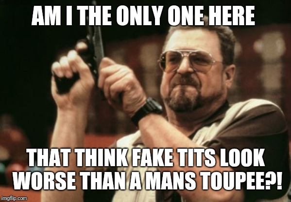 Am I The Only One Around Here Meme | AM I THE ONLY ONE HERE THAT THINK FAKE TITS LOOK WORSE THAN A MANS TOUPEE?! | image tagged in memes,am i the only one around here | made w/ Imgflip meme maker