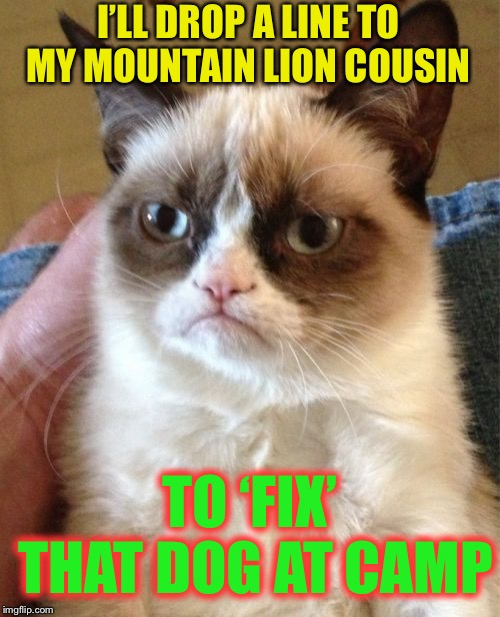 Grumpy Cat Meme | I'LL DROP A LINE TO MY MOUNTAIN LION COUSIN TO 'FIX' THAT DOG AT CAMP | image tagged in memes,grumpy cat | made w/ Imgflip meme maker