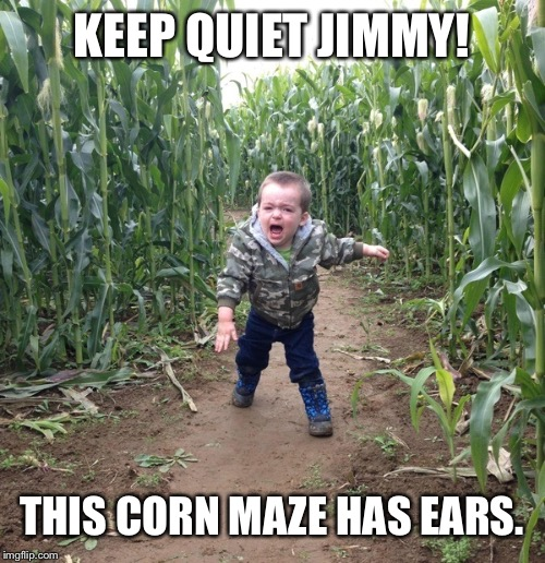Corn Maze Kid | KEEP QUIET JIMMY! THIS CORN MAZE HAS EARS. | image tagged in corn maze kid | made w/ Imgflip meme maker