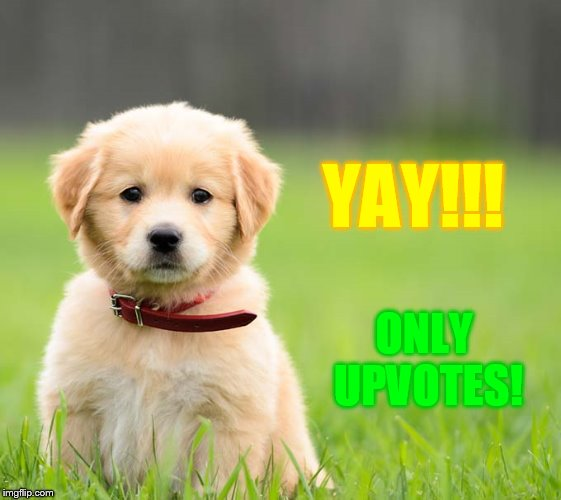 YAY!!! ONLY UPVOTES! | made w/ Imgflip meme maker