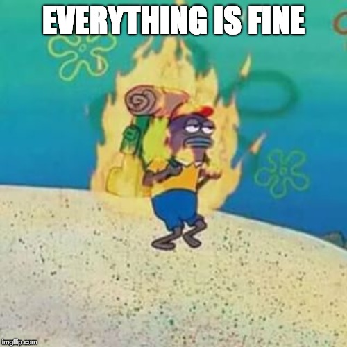 spongebob on fire | EVERYTHING IS FINE | image tagged in spongebob on fire | made w/ Imgflip meme maker