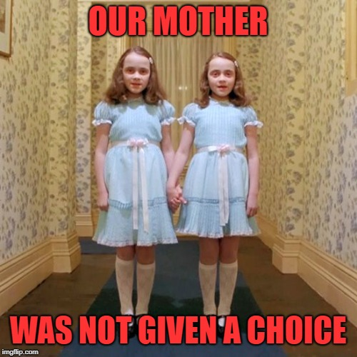 Twins from The Shining | OUR MOTHER WAS NOT GIVEN A CHOICE | image tagged in twins from the shining | made w/ Imgflip meme maker