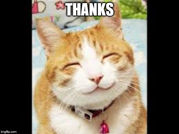Happy Cat is Happy | THANKS | image tagged in happy cat is happy | made w/ Imgflip meme maker