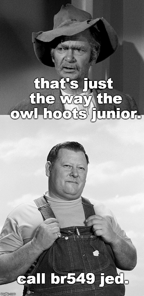 I'VE NEVER HEARD ANY HOOTING AT HOOTERS. | that's just the way the owl hoots junior. call br549 jed. | image tagged in jed clampett,junior samples,hooters,memes | made w/ Imgflip meme maker