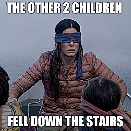 Bird Box Meme | THE OTHER 2 CHILDREN FELL DOWN THE STAIRS | image tagged in memes,bird box | made w/ Imgflip meme maker