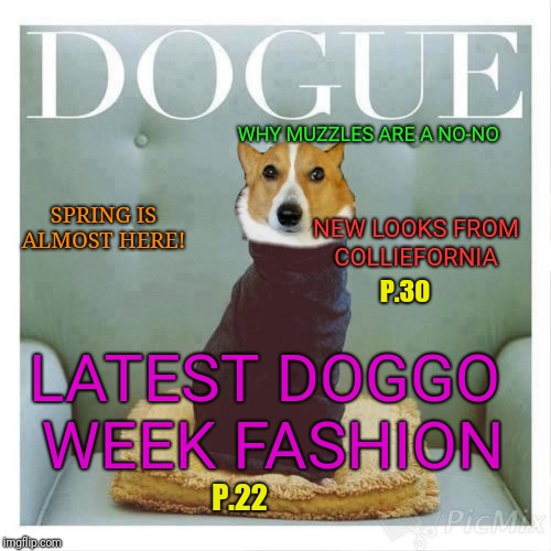 The pages are filled with positively fetching models! Doggo Week (March 10-16, a Blaze_The_Blaziken and 1forpeace event) |  WHY MUZZLES ARE A NO-NO; SPRING IS ALMOST HERE! NEW LOOKS FROM COLLIEFORNIA; P.30; LATEST DOGGO WEEK FASHION; P.22 | image tagged in memes,runway fashion,doggo week,1forpeace,blaze the blaziken,vogue | made w/ Imgflip meme maker