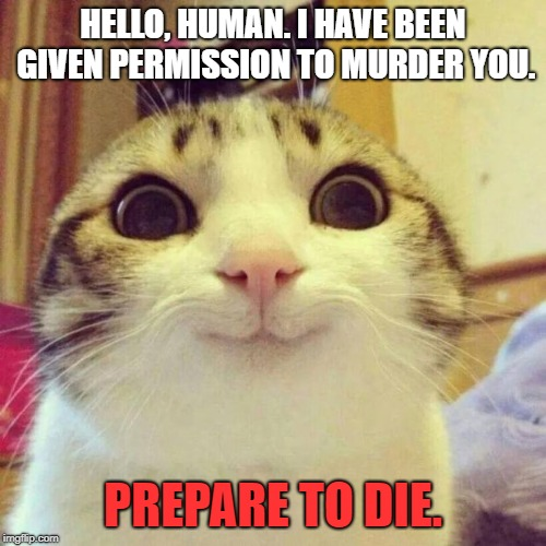 Smiling Cat | HELLO, HUMAN. I HAVE BEEN GIVEN PERMISSION TO MURDER YOU. PREPARE TO DIE. | image tagged in memes,smiling cat | made w/ Imgflip meme maker