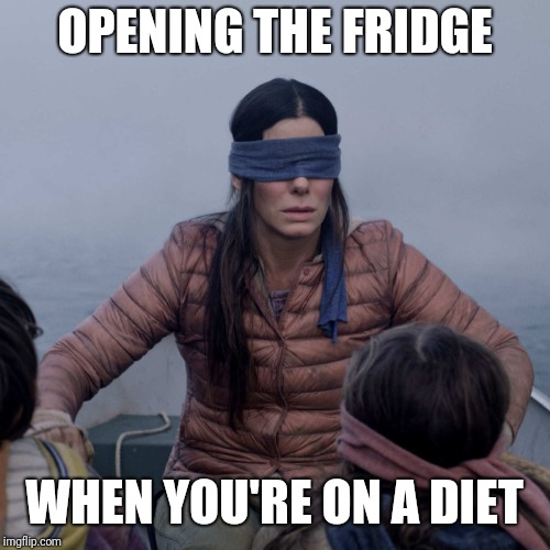 Bird Box | OPENING THE FRIDGE WHEN YOU'RE ON A DIET | image tagged in memes,bird box | made w/ Imgflip meme maker