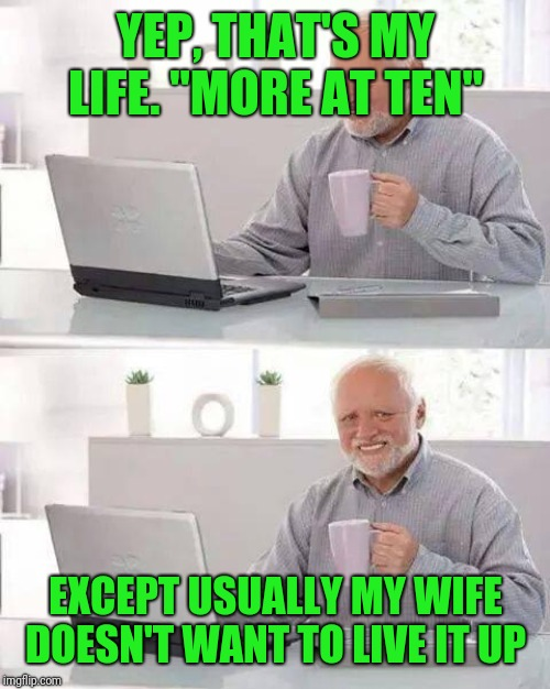 "Hide the Pain Harold Meme | YEP, THAT'S MY LIFE. ""MORE AT TEN"" EXCEPT USUALLY MY WIFE DOESN'T WANT TO LIVE IT UP 