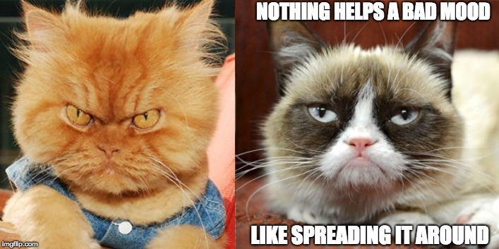 NOTHING HELPS A BAD MOOD LIKE SPREADING IT AROUND | image tagged in grump cat and angry cat | made w/ Imgflip meme maker
