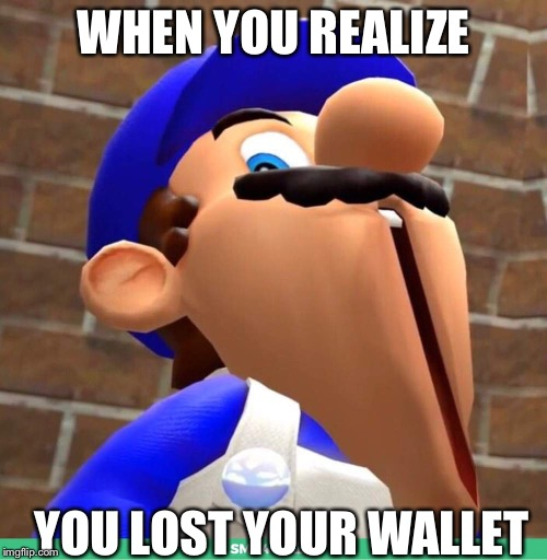 smg4's face | WHEN YOU REALIZE YOU LOST YOUR WALLET | image tagged in smg4's face | made w/ Imgflip meme maker