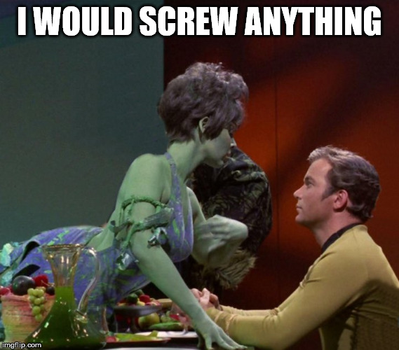 I would hit anything | I WOULD SCREW ANYTHING | image tagged in captain kirk | made w/ Imgflip meme maker