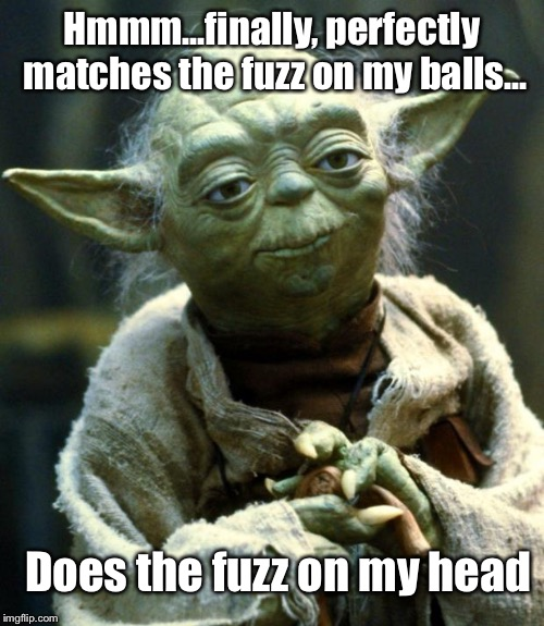 Star Wars Yoda Meme | Hmmm...finally, perfectly matches the fuzz on my balls... Does the fuzz on my head | image tagged in memes,star wars yoda | made w/ Imgflip meme maker