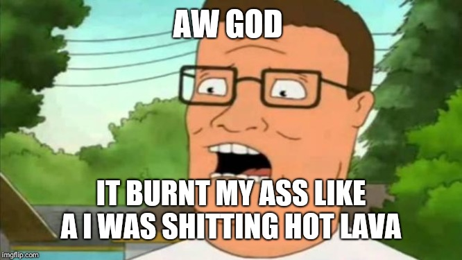 Hank hill | AW GOD IT BURNT MY ASS LIKE A I WAS SHITTING HOT LAVA | image tagged in hank hill | made w/ Imgflip meme maker