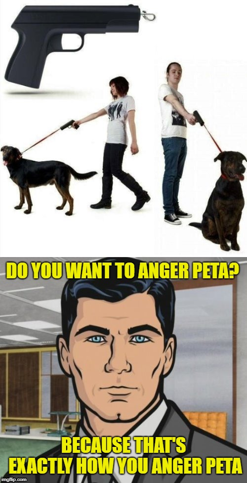 Dog Leash Gun (Doggo Week March 10-16 a Blaze_the_Blaziken and 1forpeace Event) | DO YOU WANT TO ANGER PETA? BECAUSE THAT'S EXACTLY HOW YOU ANGER PETA | image tagged in memes,archer,doggo week,dashhopes,leash gun,dogs | made w/ Imgflip meme maker