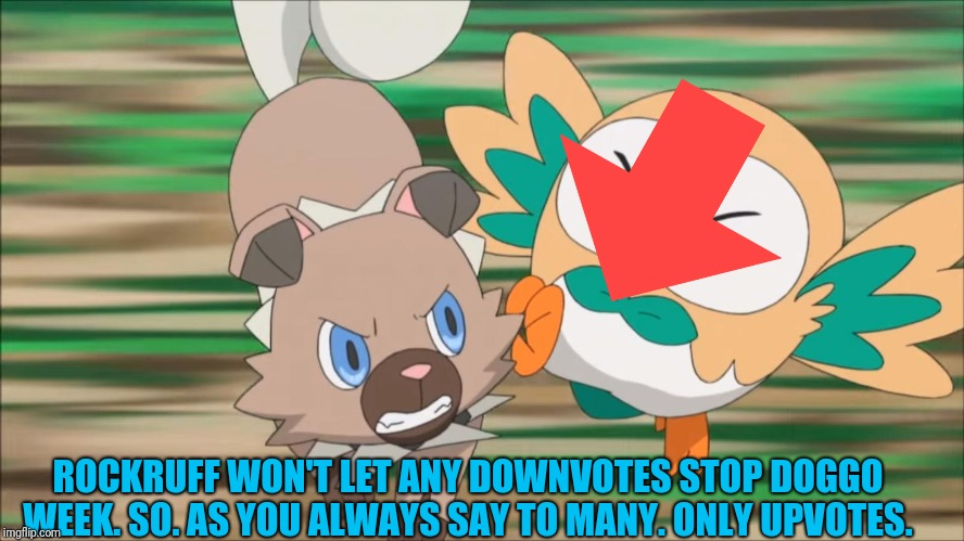 Rockruff attacks Rowlet | ROCKRUFF WON'T LET ANY DOWNVOTES STOP DOGGO WEEK. SO. AS YOU ALWAYS SAY TO MANY. ONLY UPVOTES. | image tagged in rockruff attacks rowlet | made w/ Imgflip meme maker