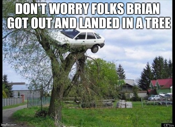 Secure Parking Meme | DON'T WORRY FOLKS BRIAN GOT OUT AND LANDED IN A TREE | image tagged in memes,secure parking | made w/ Imgflip meme maker