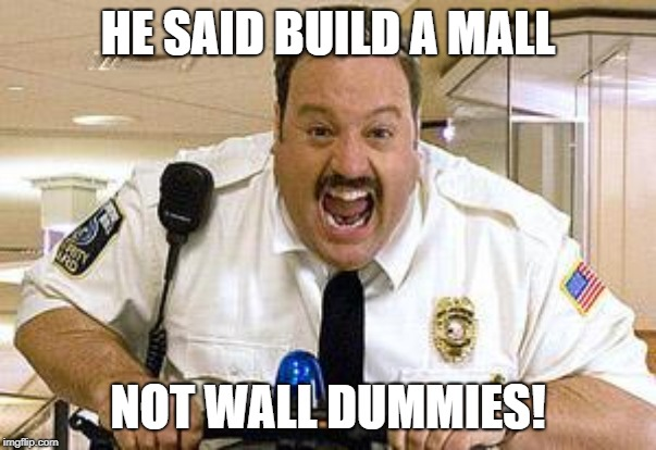 HE SAID BUILD A MALL NOT WALL DUMMIES! | image tagged in mall cop | made w/ Imgflip meme maker