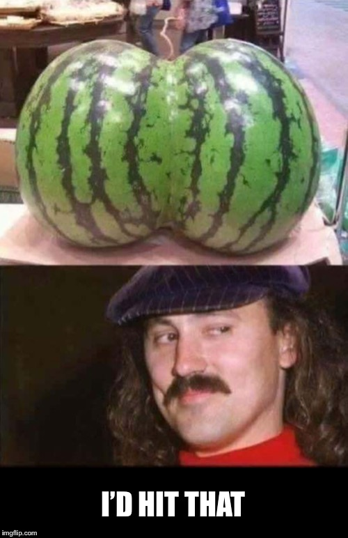 Would you? | I'D HIT THAT | image tagged in gallegher,watermelon,comedian | made w/ Imgflip meme maker