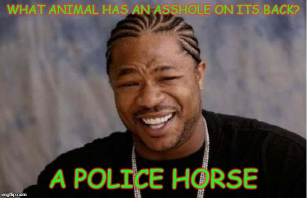 Yo Dawg Heard You | WHAT ANIMAL HAS AN ASSHOLE ON ITS BACK? A POLICE HORSE | image tagged in memes,yo dawg heard you | made w/ Imgflip meme maker