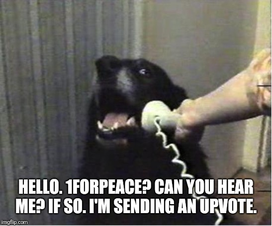 Yes this is dog | HELLO. 1FORPEACE? CAN YOU HEAR ME? IF SO. I'M SENDING AN UPVOTE. | image tagged in yes this is dog | made w/ Imgflip meme maker