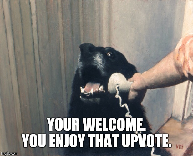 hello yes this is dog | YOUR WELCOME. YOU ENJOY THAT UPVOTE. | image tagged in hello yes this is dog | made w/ Imgflip meme maker